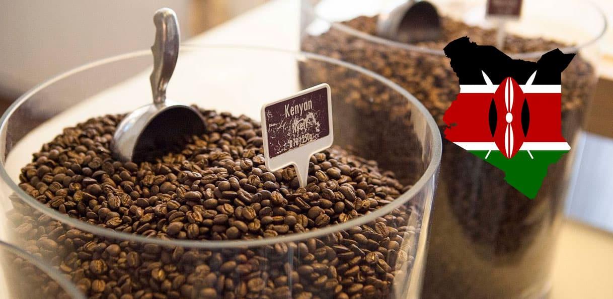Café en provenance du Kenya