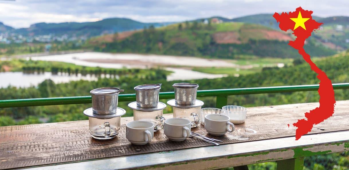 Plantation de café au Vietnam