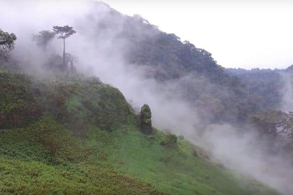 Paysage montagneux du Cameroun