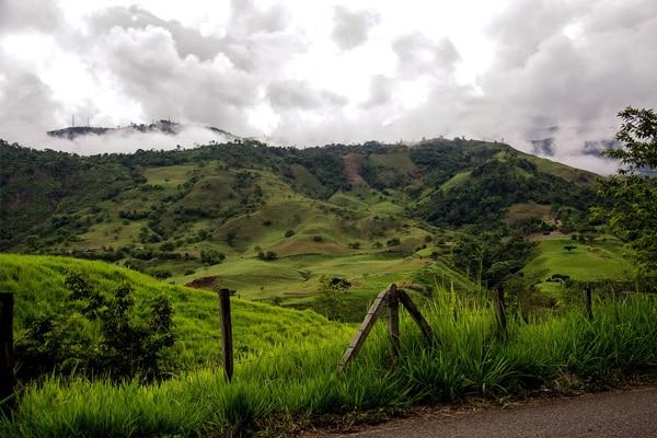 ge de café en Colombie