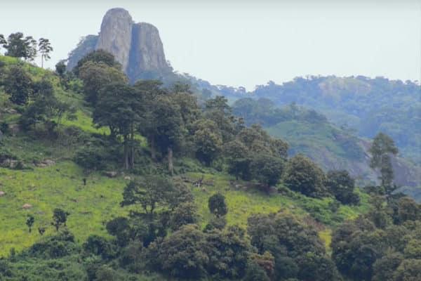 Paysage de Côte d'Ivoire