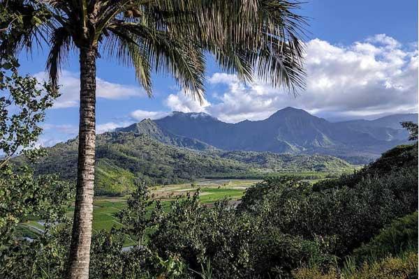 Paysage de Hawaï
